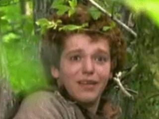 Robin of Sherwood: S